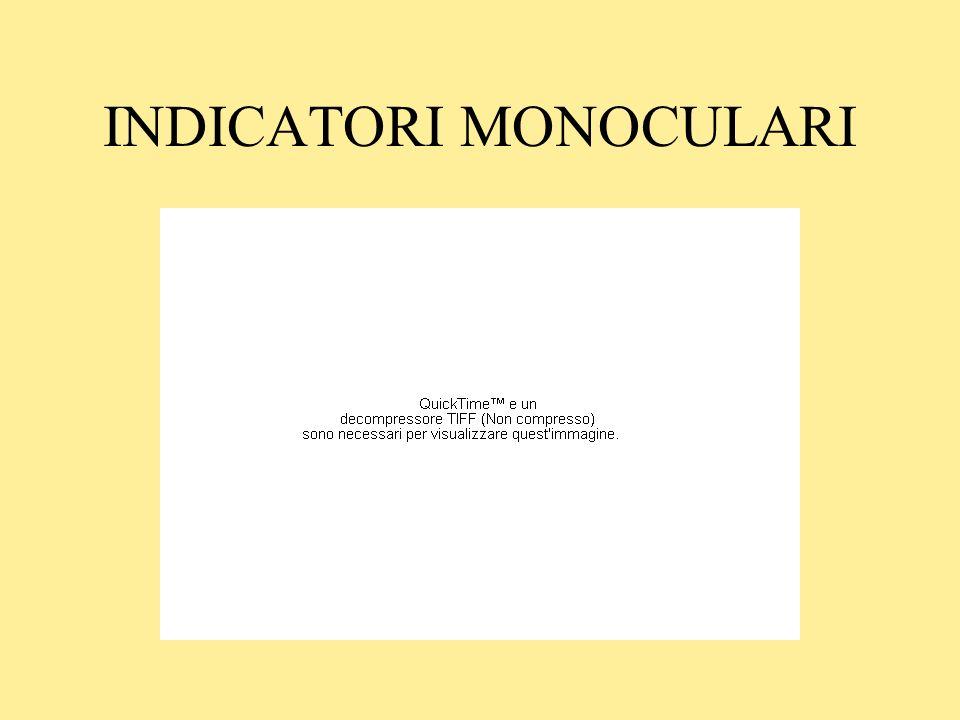 INDICATORI MONOCULARI