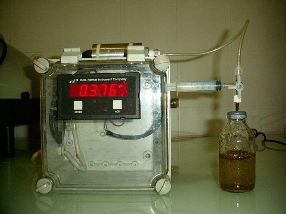 La GPT prevede l'impiego di: alimenti, medium e liquido ruminale