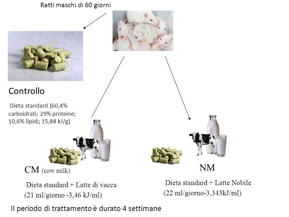 Controllo CM (cow milk) Il periodo di trattamento è durato 4 settimane