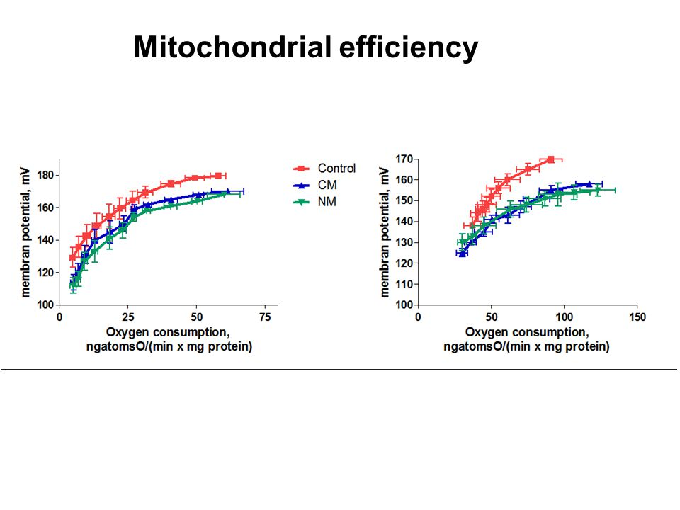 Mitochondrial efficiency