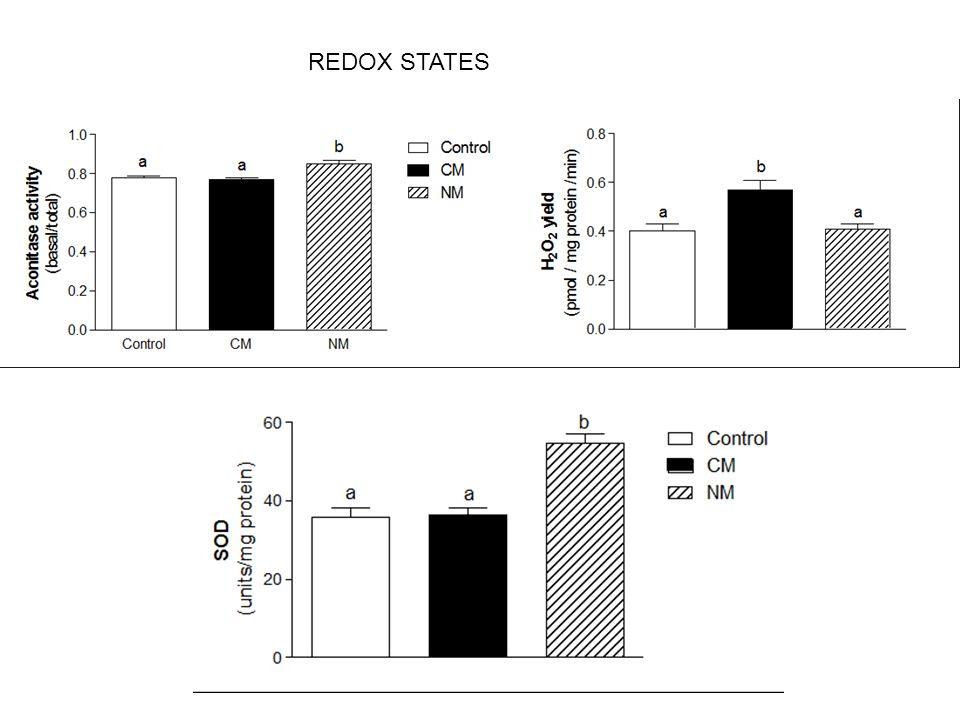 REDOX STATES