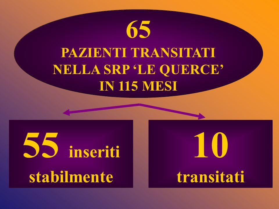 55 inseriti stabilmente 10 65 transitati PAZIENTI TRANSITATI