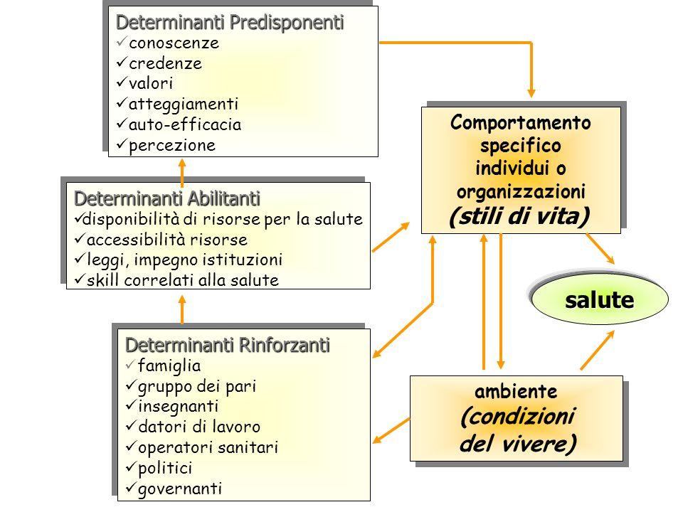 organizzazioni (stili di vita)