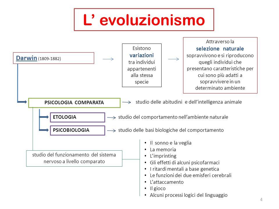 L' evoluzionismo Darwin (1809-1882) selezione naturale variazioni