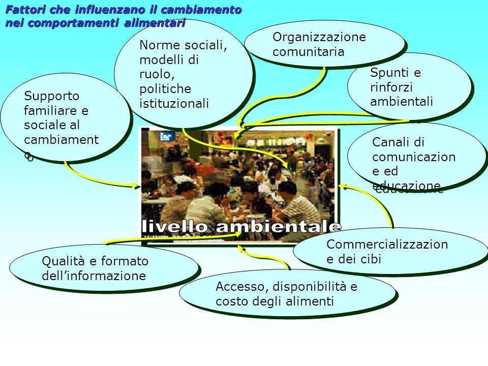livello ambientale Organizzazione comunitaria