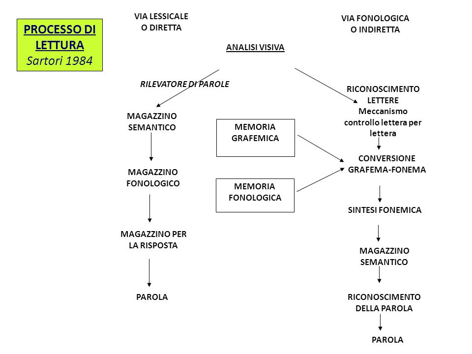 PROCESSO DI LETTURA Sartori 1984 VIA LESSICALE VIA FONOLOGICA