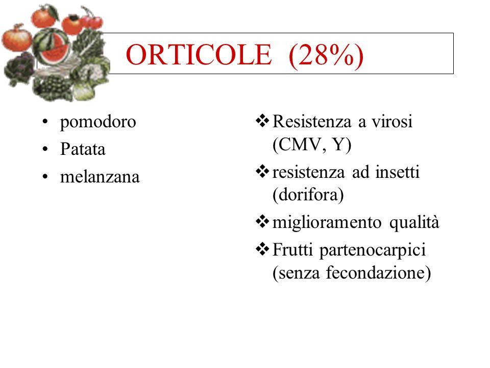 ORTICOLE (28%) pomodoro Patata melanzana Resistenza a virosi (CMV, Y)
