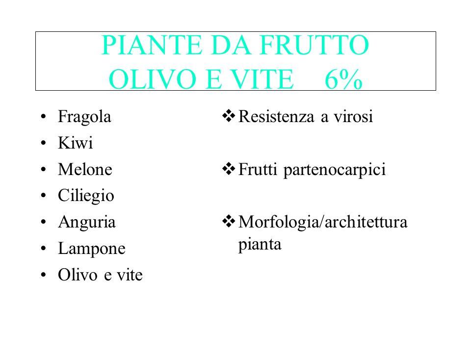 PIANTE DA FRUTTO OLIVO E VITE 6%