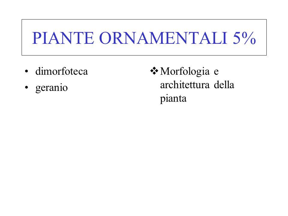 PIANTE ORNAMENTALI 5% dimorfoteca geranio