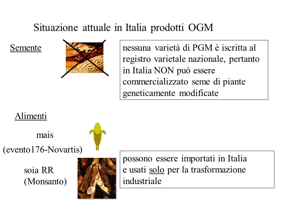 Situazione attuale in Italia prodotti OGM