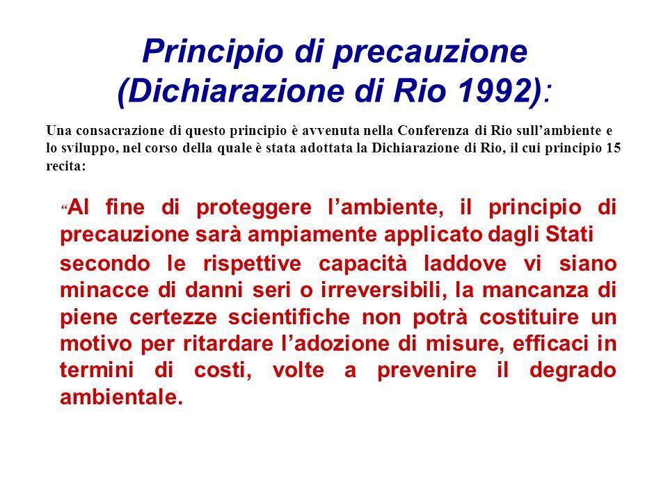 Principio di precauzione (Dichiarazione di Rio 1992):