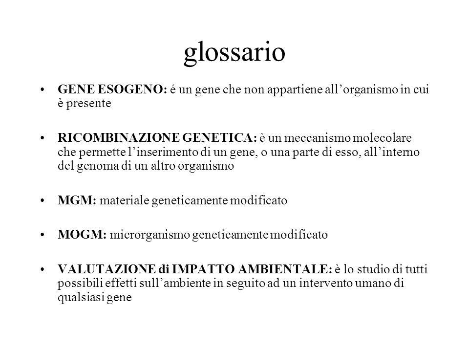 glossario GENE ESOGENO: é un gene che non appartiene all'organismo in cui è presente.