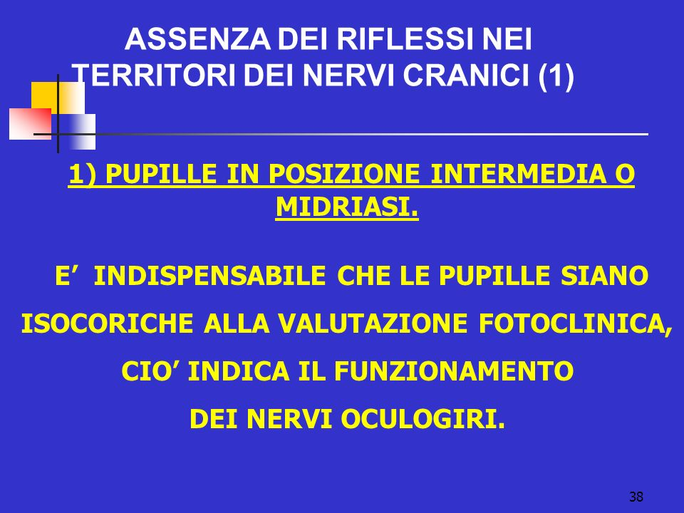 1) PUPILLE IN POSIZIONE INTERMEDIA O MIDRIASI.