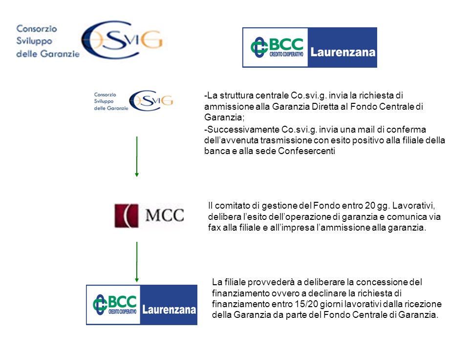 La struttura centrale Co. svi. g