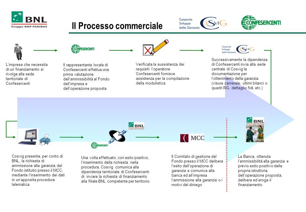 Il Processo commerciale