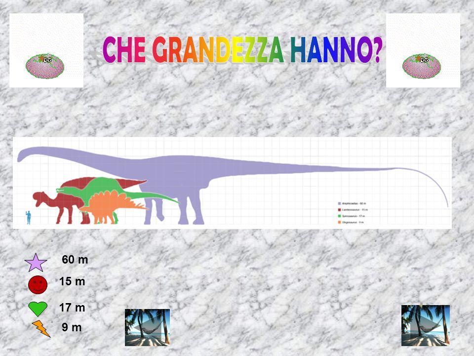 CHE GRANDEZZA HANNO 60 m 15 m 17 m 9 m