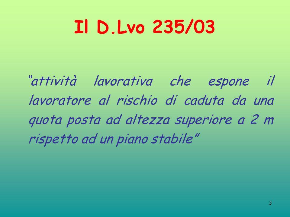 Il D.Lvo 235/03
