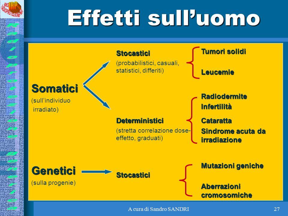 Effetti sull'uomo Somatici Genetici Stocastici Tumori solidi Leucemie