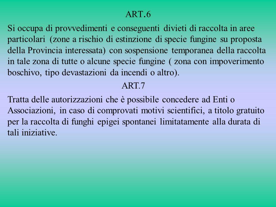 ART.6