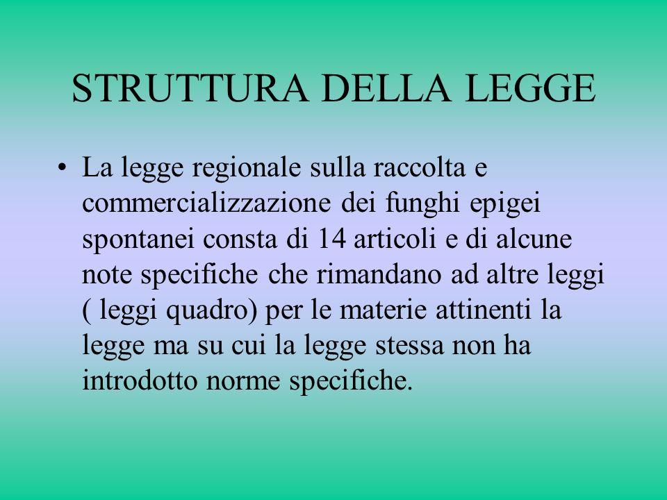 STRUTTURA DELLA LEGGE