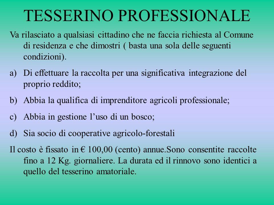 TESSERINO PROFESSIONALE
