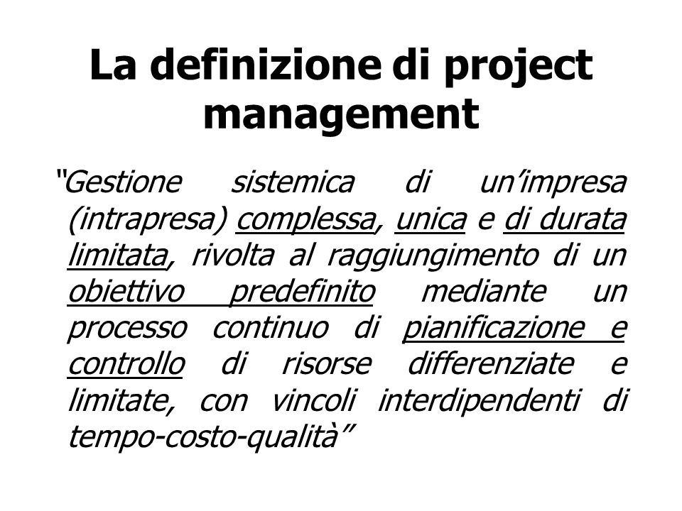 La definizione di project management