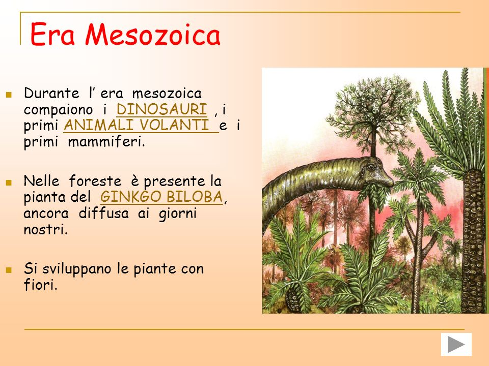 Era Mesozoica Durante l' era mesozoica compaiono i DINOSAURI , i primi ANIMALI VOLANTI e i primi mammiferi.