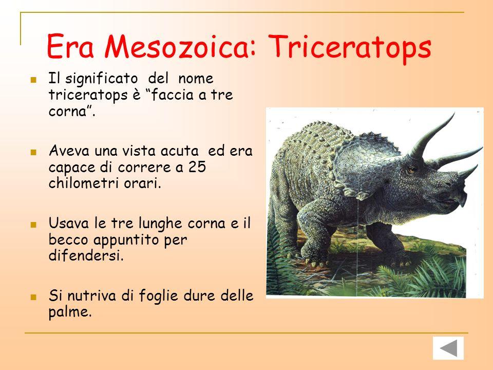 Era Mesozoica: Triceratops