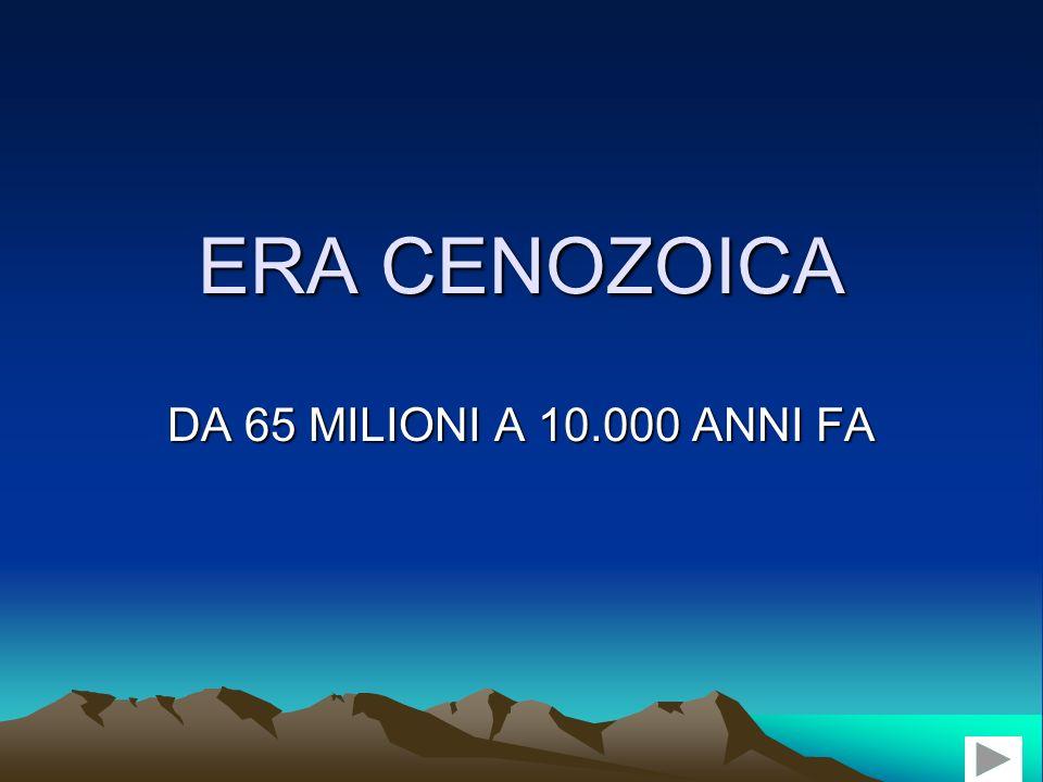 ERA CENOZOICA DA 65 MILIONI A 10.000 ANNI FA