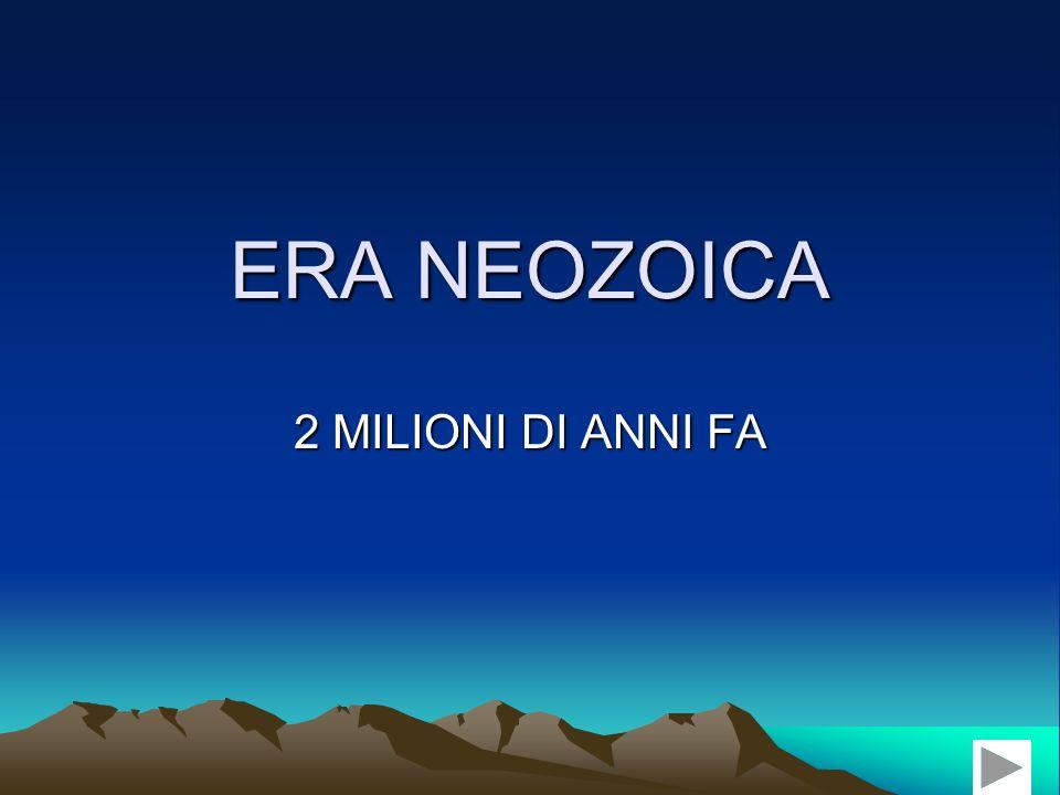 ERA NEOZOICA 2 MILIONI DI ANNI FA