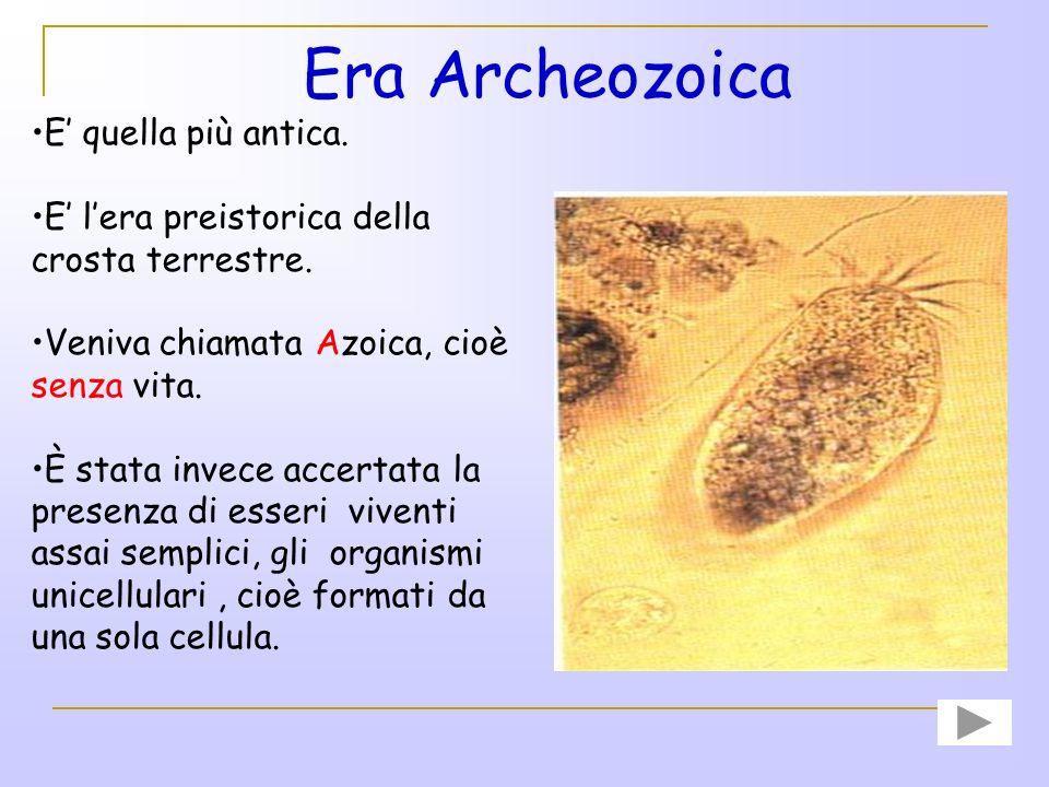 Era Archeozoica E' quella più antica.