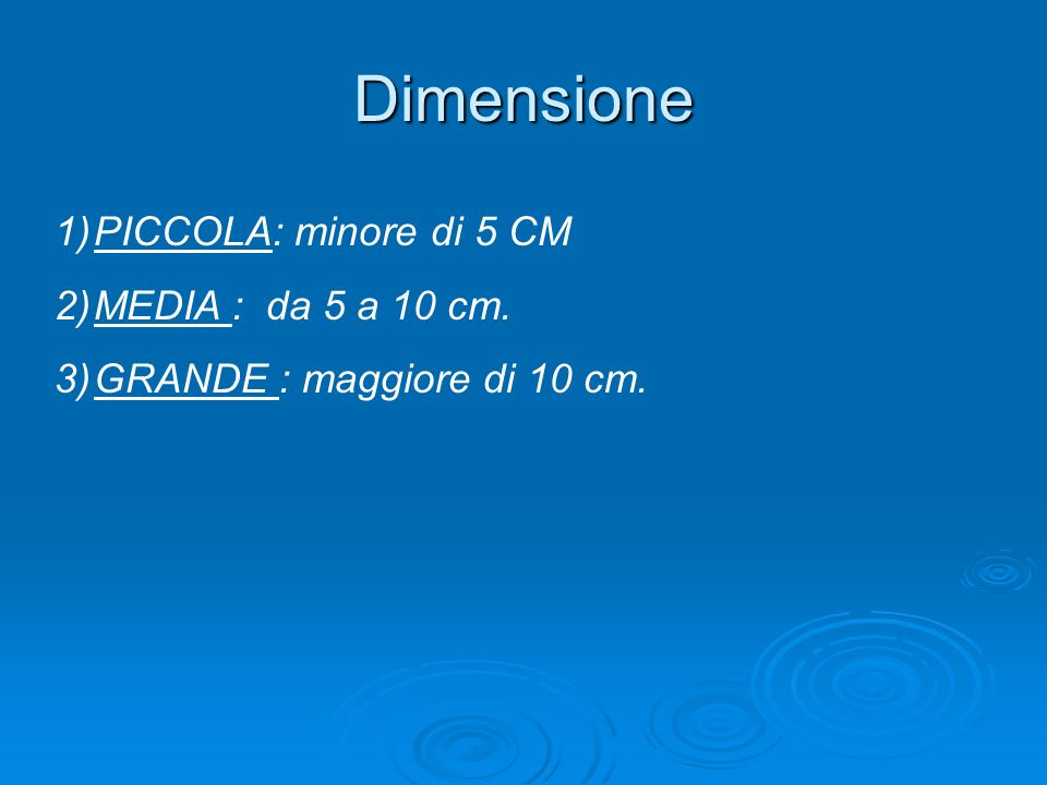 Dimensione PICCOLA: minore di 5 CM MEDIA : da 5 a 10 cm.