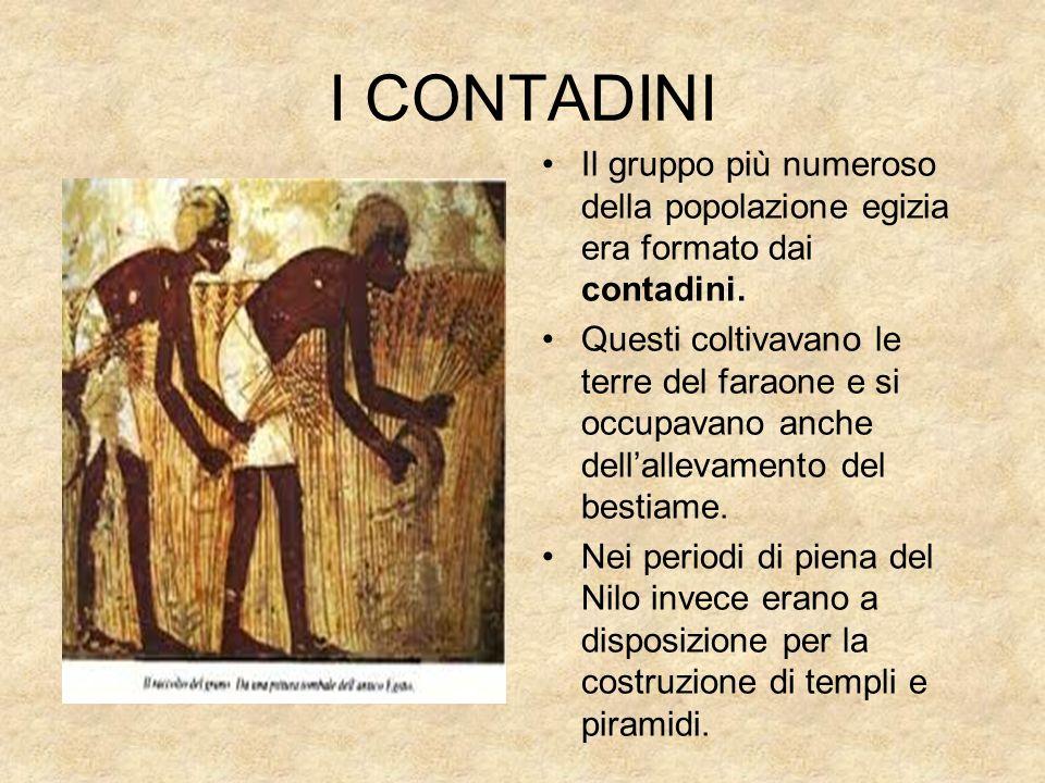 I CONTADINI Il gruppo più numeroso della popolazione egizia era formato dai contadini.