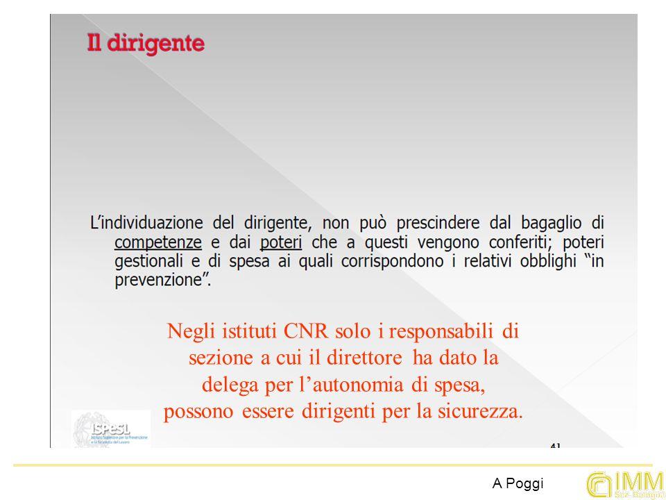 Negli istituti CNR solo i responsabili di sezione a cui il direttore ha dato la delega per l'autonomia di spesa, possono essere dirigenti per la sicurezza.