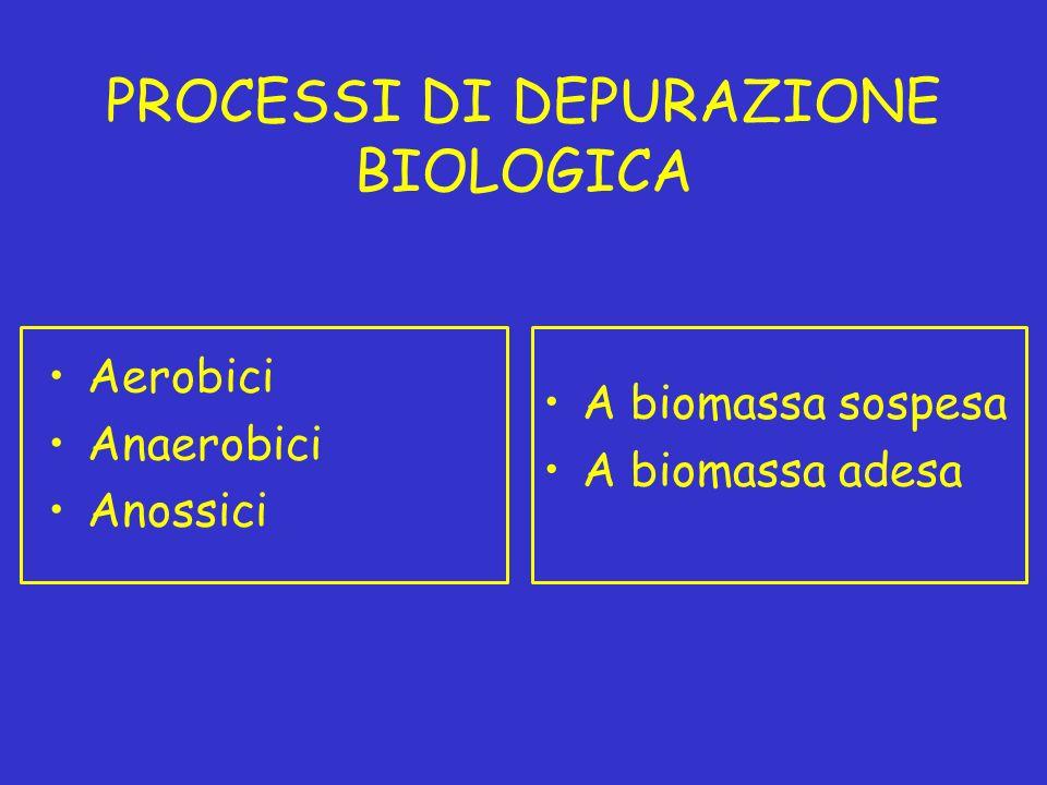 PROCESSI DI DEPURAZIONE BIOLOGICA