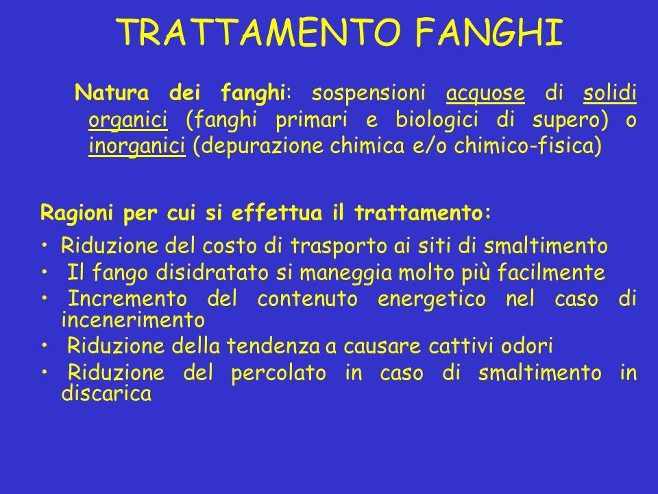 TRATTAMENTO FANGHI