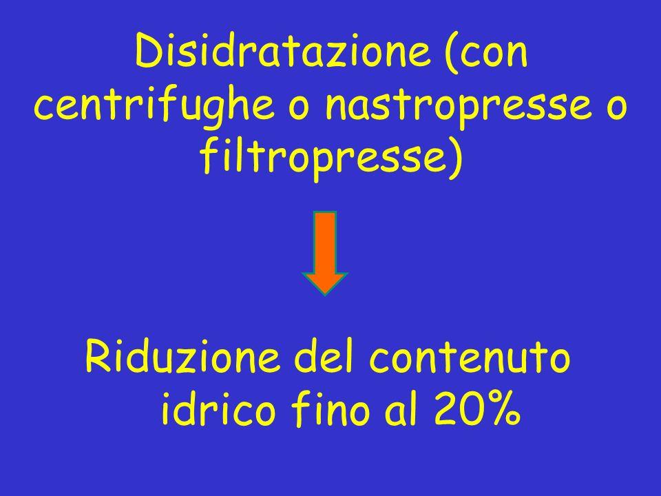 Disidratazione (con centrifughe o nastropresse o filtropresse)