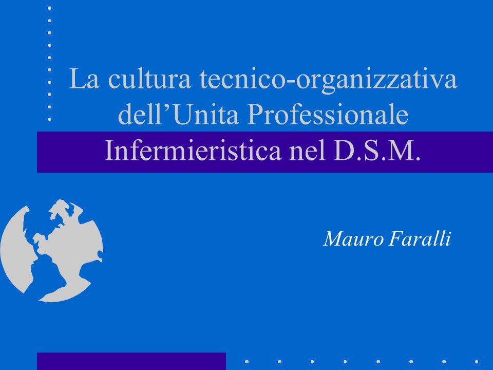 La cultura tecnico-organizzativa dell'Unita Professionale Infermieristica nel D.S.M.