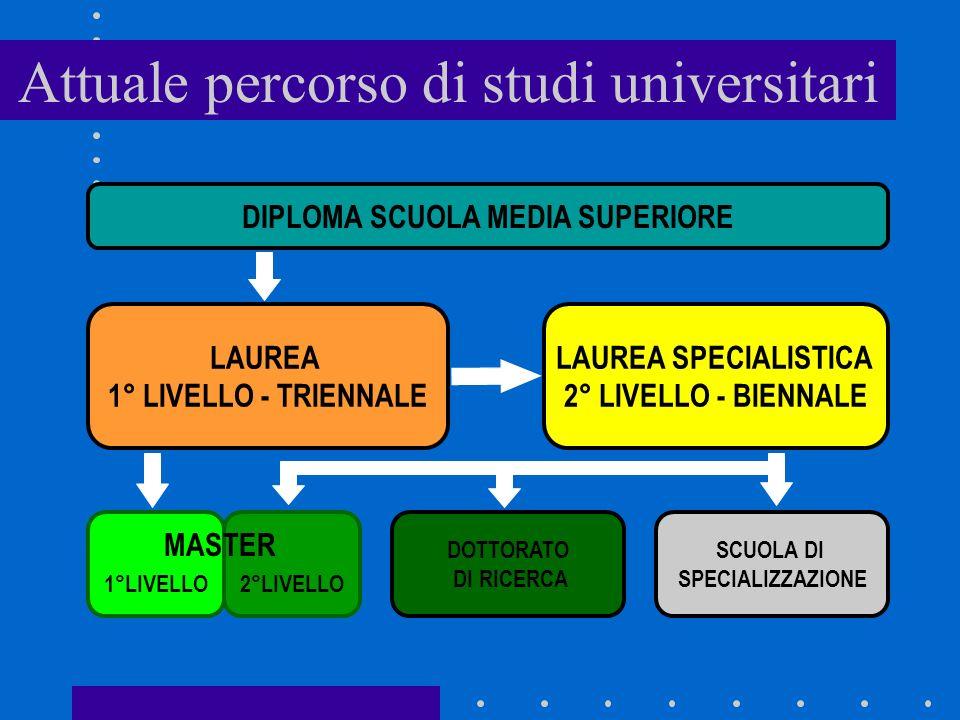 Attuale percorso di studi universitari