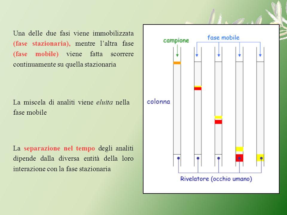 Una delle due fasi viene immobilizzata (fase stazionaria), mentre l'altra fase (fase mobile) viene fatta scorrere continuamente su quella stazionaria