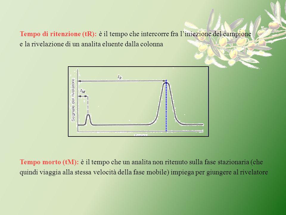 Tempo di ritenzione (tR): è il tempo che intercorre fra l'iniezione del campione e la rivelazione di un analita eluente dalla colonna