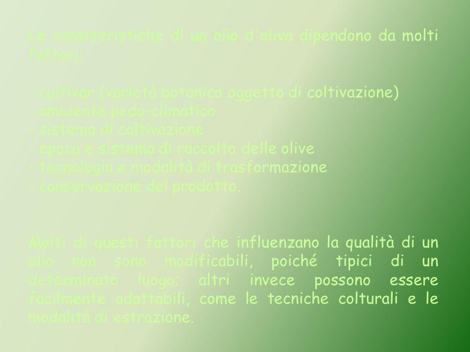 Le caratteristiche di un olio d oliva dipendono da molti fattori: