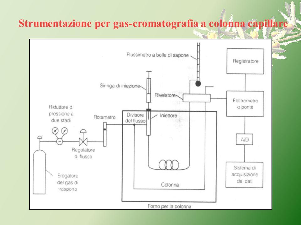Strumentazione per gas-cromatografia a colonna capillare