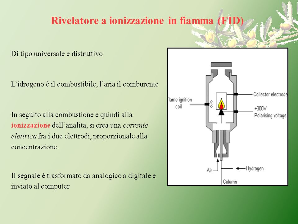 Rivelatore a ionizzazione in fiamma (FID)