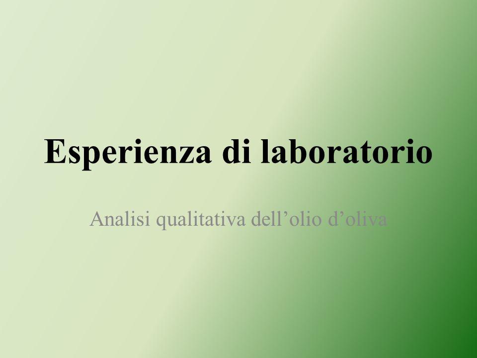 Esperienza di laboratorio