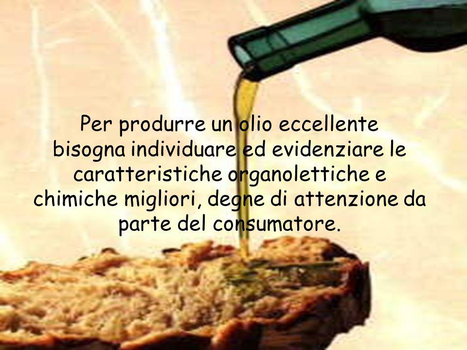 Per produrre un olio eccellente