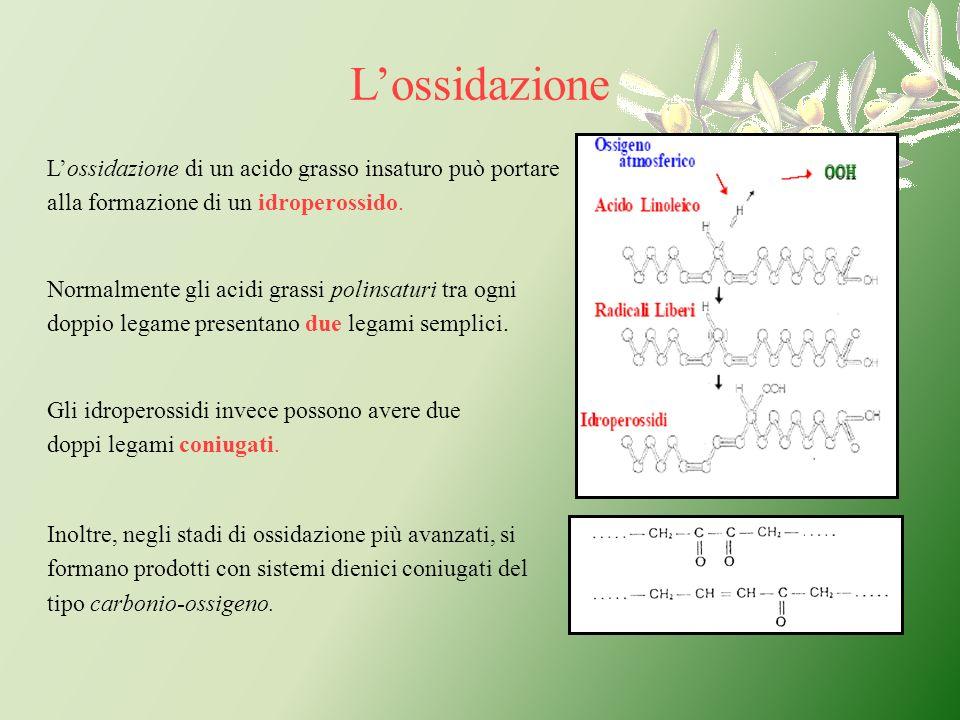 L'ossidazioneL'ossidazione di un acido grasso insaturo può portare alla formazione di un idroperossido.