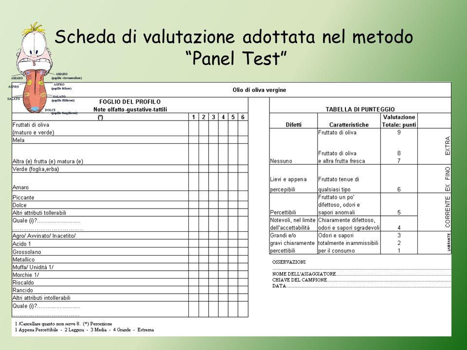 Scheda di valutazione adottata nel metodo