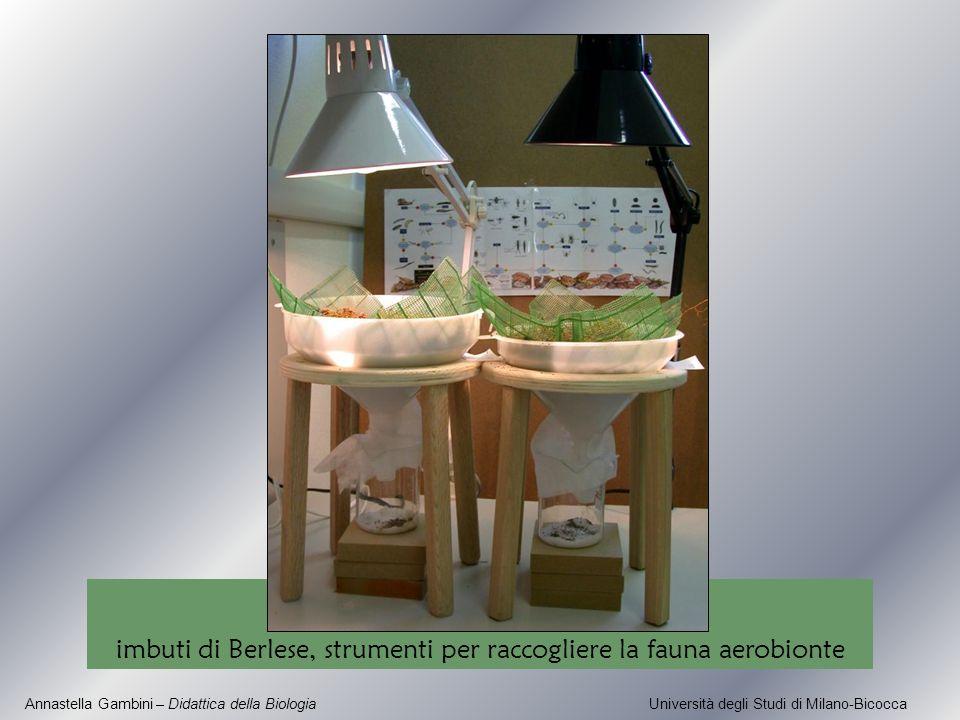 imbuti di Berlese, strumenti per raccogliere la fauna aerobionte