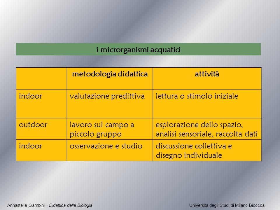 i microrganismi acquatici metodologia didattica